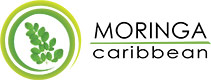 MoringaCaribbean.at